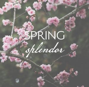 Spring Splendor Promo